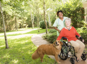 cost of in home senior care new jersey
